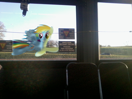 Rainbow Dash Races my Bus by BCMmultimedia
