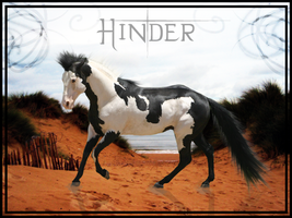 Hinder by Swan-Studio