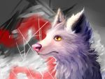 Wolfy by Peppkitty