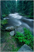 Middle Fork 1 by wyorev