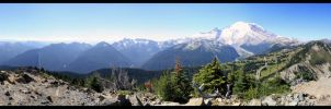 Mt Rainer by 47X