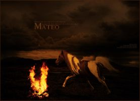 Mateo by altered-humanity