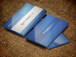 Corporate Simple Business Card Vol:02 by rakibsarowar