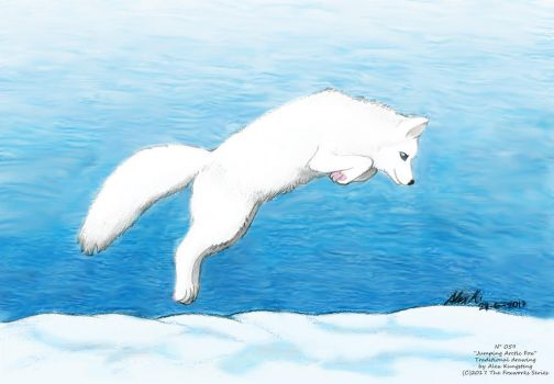 Jumping Arctic Fox by AlexKH97