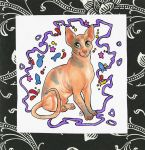 kitty card by Janaita