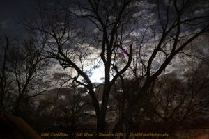 00-FullMoon-November-2015-IMG-0072-WP-Master by darkmoonphoto