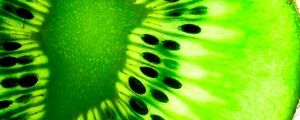 Translucent Kiwi Fruit 2560p by SyntheticIdea