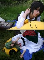 Code Geass: Peaceful Life by Green-Makakas