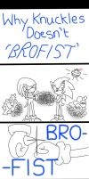 Why Knuckles don't 'Bro-Fist' by FireWitch25