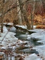 winter creek by bluewave-stock