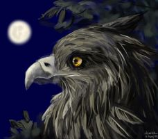 Sleepless Gryphon - Painter by denn