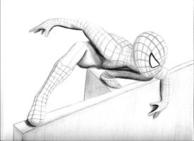 Spidey Sketch by Alley9