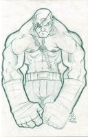 Sagat Flex by nctorres