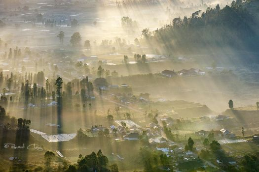 .:Morning Rays:. by RHCheng