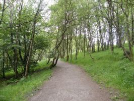 West Highland Way1 by Anararion