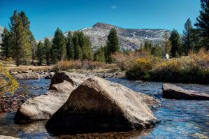 Toulumne Meadows Stream, Yosemite NP, CA by Mjag