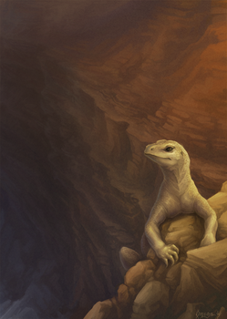 Lizard on the rocks by OmegaLioness