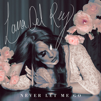 Lana Del Rey - Never Let Me Go by other-covers