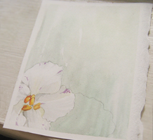Unfinished ATC - African violet by unSpookyLaughter