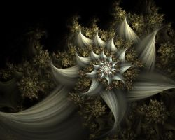 white flower by johnnybg