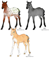Foal designs for Silli and Saphy by Okami-Haru