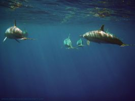 Into The Deep Blue by Oddersnude