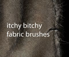 itchy bitchy fabric brushes by nathie