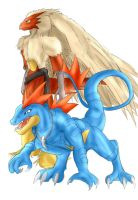 Blaziken and Feraligatr sketch by Blue-Uncia