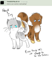 Question 6 by GoldenfluffDA