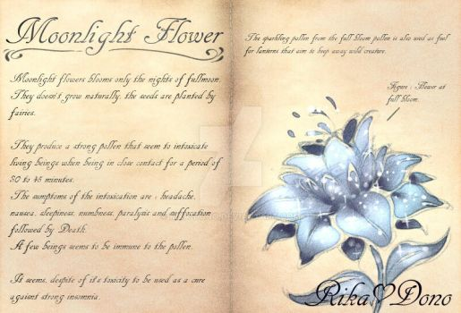 Phoena's Note : Moonlight Flower by rika-dono