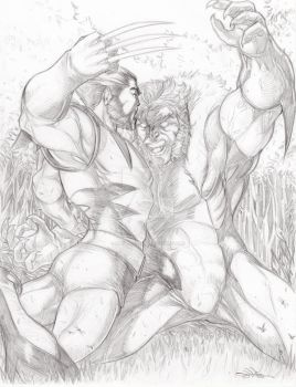 CLASSIC SABRETOOTH VS. WOLVERINE   FOR SALE by Dingodile24