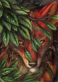 ACEOFursXchange October 2015 - Redwall151 by Night-eco