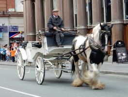 Horse-Drawn Carriage at Hard Days Night Hotel by rlkitterman