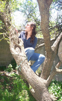 On a tree by Guidai