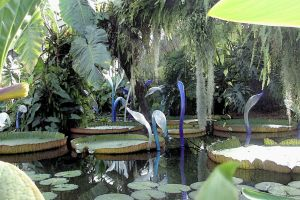 Chihuli Snakes In PoW Amazon Lily Pond Watercolour by aegiandyad