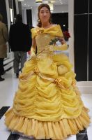 Belle Off To The Ball by Wingedisis16