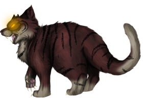 Tigerstar by ElusiveBlaze