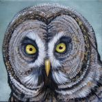 Great Gray Owl by HouseofChabrier
