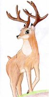 Bambi-The Prince of the Forest by Hatters-Workshop