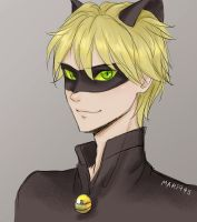 Grown up Chat Noir by Mari945