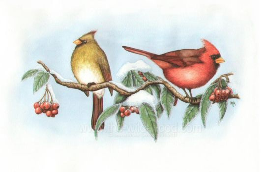 Cardinals by WildWoodArtsCo