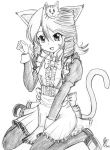 Neko-Saiaka by Thurosis