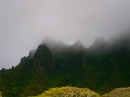 Foggy Mountains by Veesha