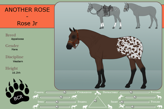 Ref sheet - Another Rose by MammothEquine71