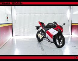 Yamaha YZF-R250 by TTS by TeofiloDesign