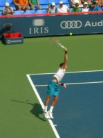 Del Potro serving by tomegatherion