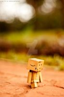 Danbo at the park by AkitoPhotoworks