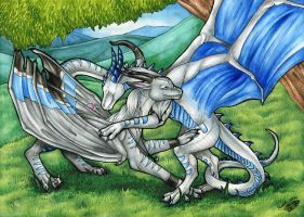 Silver Friendship by Natoli