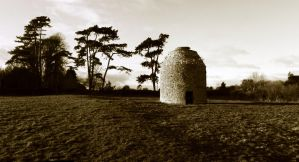 Dovecot diaries by bm102938