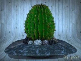 Cactus by The-Ronyn